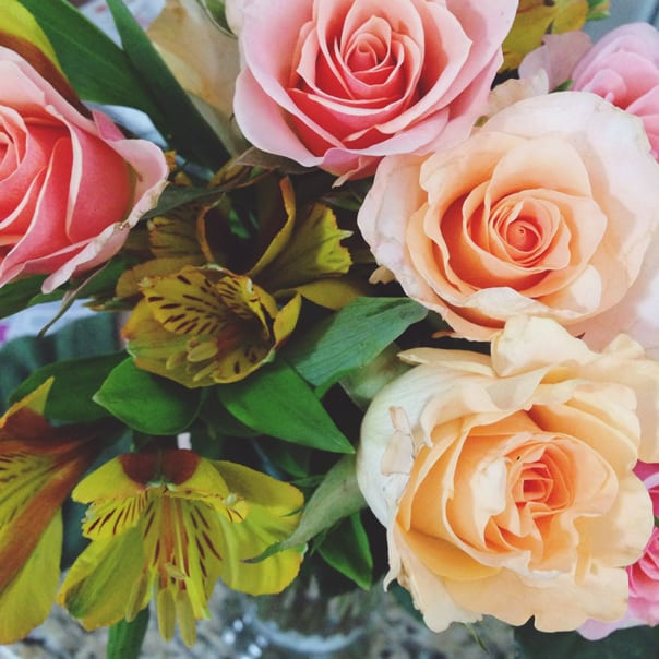 roses3-604