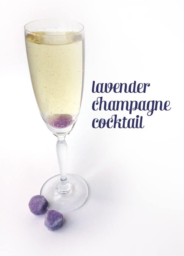 Lavender Champagne Cocktail // Feast + West