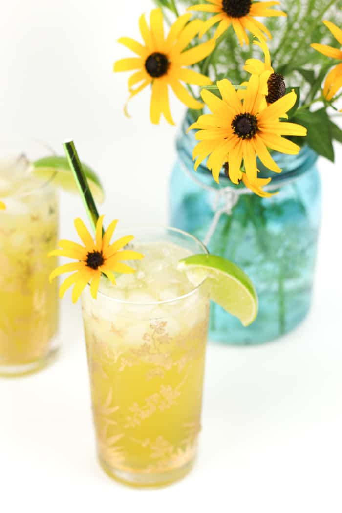 A drink for the Preakness Stakes, the Black-Eyed Susan Cocktail is so named for the Maryland-shaped blanket of yellow flowers that is draped around the winner's neck. Vodka and elderflower liqueur join pineapple, orange and lime juices for a sunny drink worthy of race-watching. (via feastandwest.com)