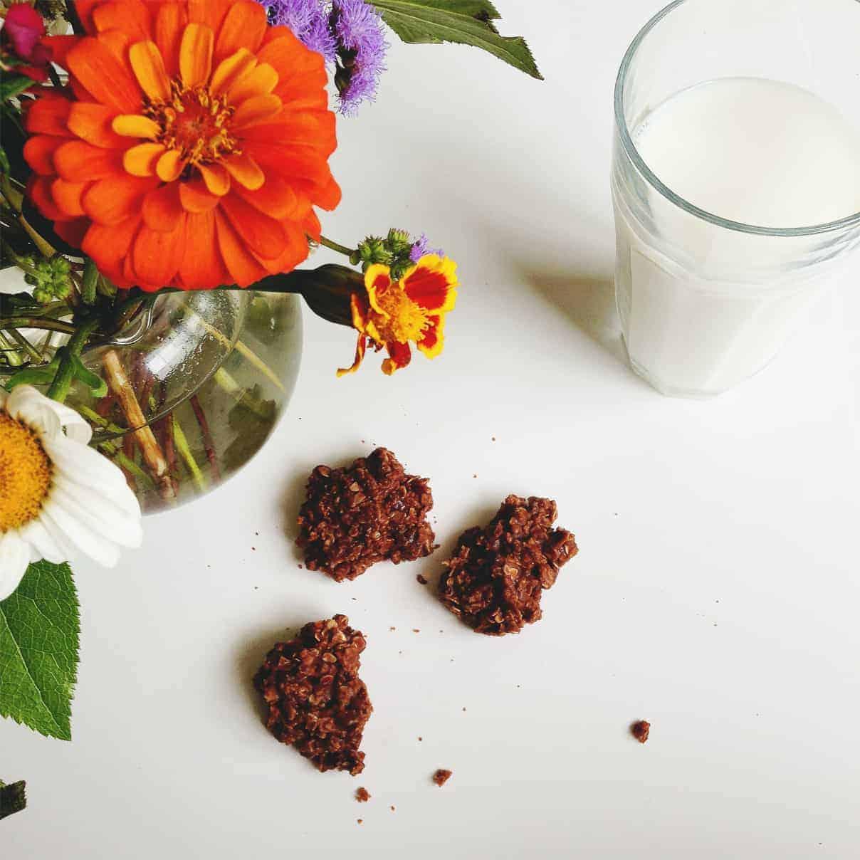 Gluten-Free No-Bake Nutella Oatmeal Cookies // Feast + West