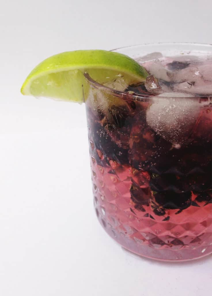 Blackberry Gin + Tonic // Feast + West