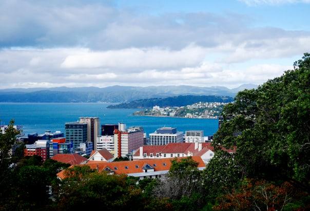 WelHidden Gems: Wellington, New Zealand Travel Guidelington Botanic Gardens // Feast + West