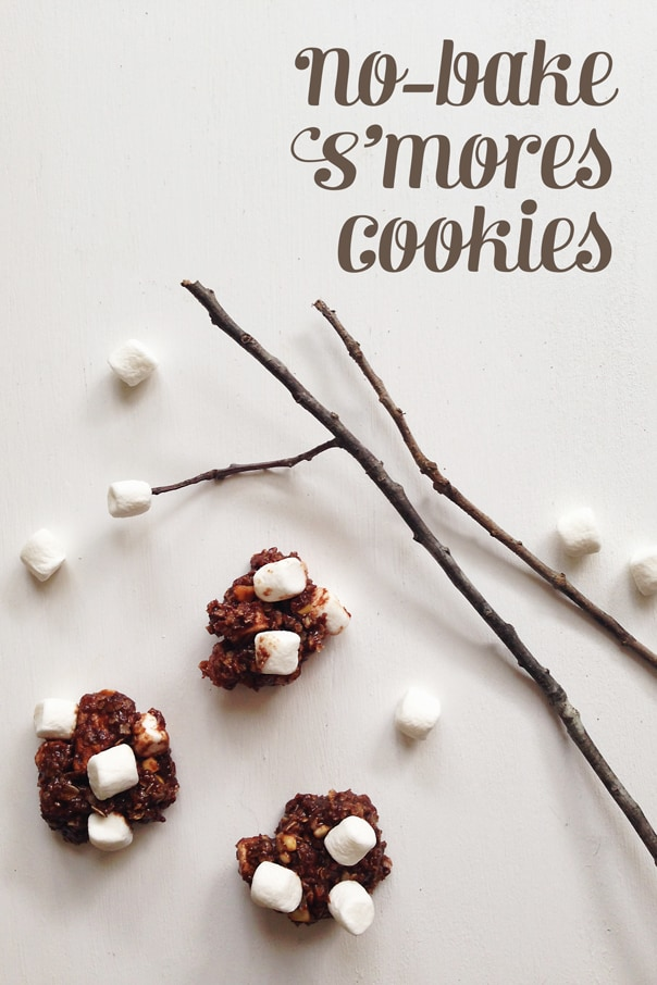Click through to see the No Bake S'mores Cookies recipe!