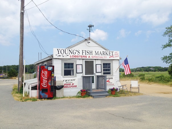 Hidden gems cape cod travel guide feast west for Cape cod fish market