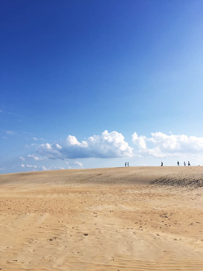 Jockey's Ridge Outer Banks NC — Take a road trip to the Outer Banks of North Carolina!