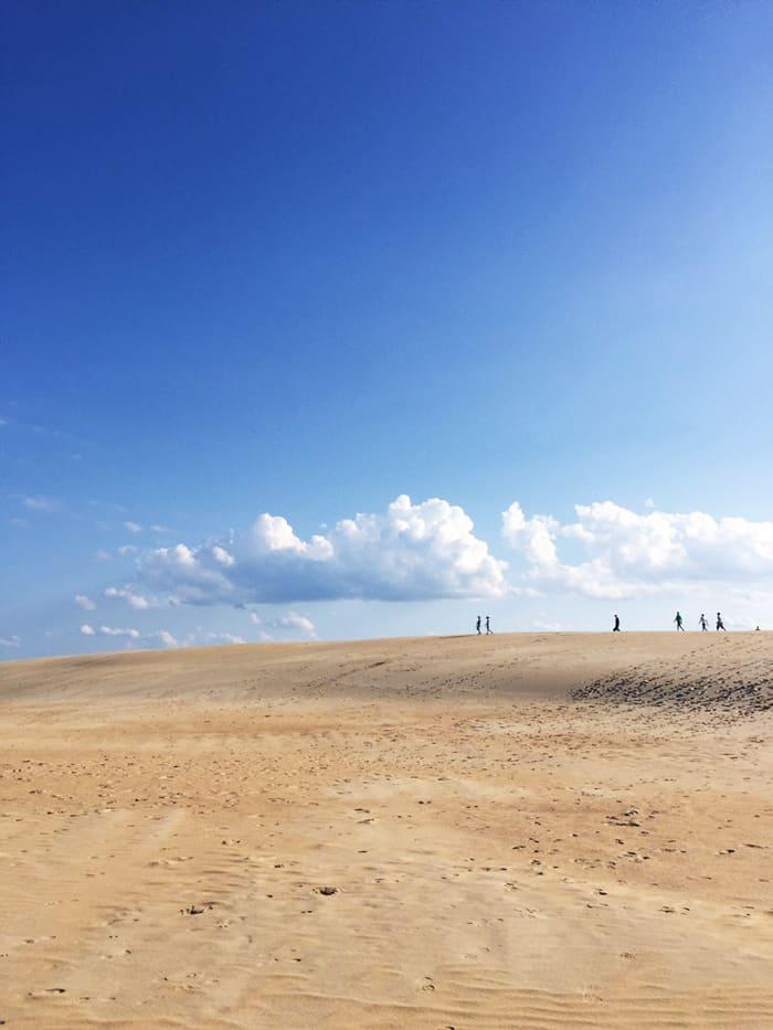 Jockey's Ridge Outer Banks NC —Take a road trip to the Outer Banks of North Carolina!