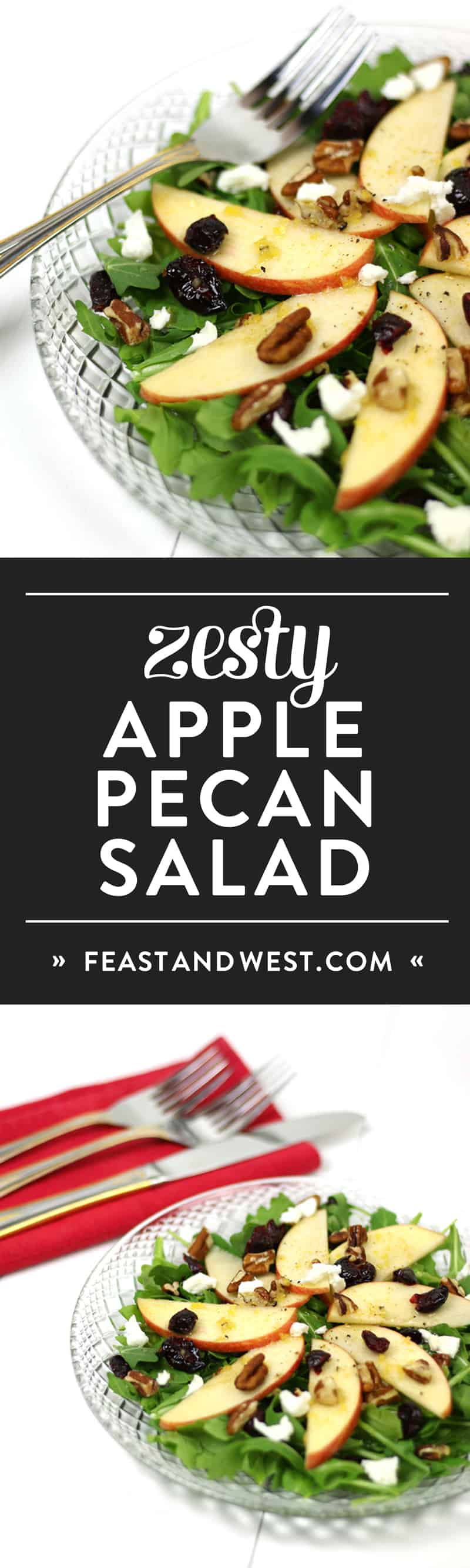 Apple Pecan Salad with Zesty Apple Dressing makes for the perfect salad for your holiday dinner party. Apples, goat cheese, pecans and dried cranberries sit atop a bed of greens and are drizzled with a sweet-and-sour dressing made with Martinelli's Apple Juice or Cider and fresh lemons. (via feastandwest.com)