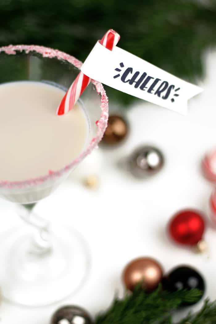The Peppermint White Chocolate Martini is a lovely after-dinner sipper for the holidays. Garnished with a free printable Candy Cane Drink Flag by @colleenpastoor, this festive drink features white chocolate liqueur, flavored vodkas and Irish cream. (via feastandwest.com)
