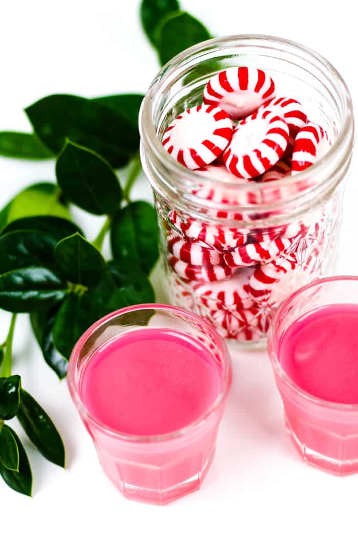 Homemade Peppermint Vodka is the key to making the best minty fresh cocktails for the holidays. Infuse peppermint candies with vodka for a sweet spirit you can enjoy in a mixed drink or as a shooter. Makes a great Christmas gift! (via feastandwest.com)