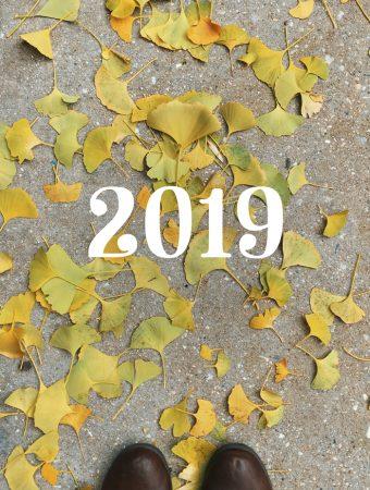 Hello, 2019!