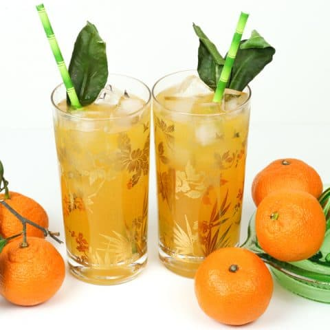 Mandarin Orange Gin & Tonic