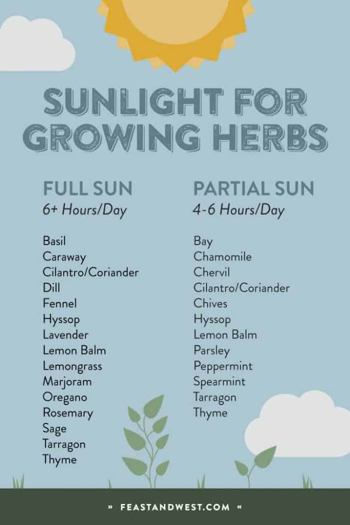 herb sunlight chart explaining which herbs grow in sunlight and shade