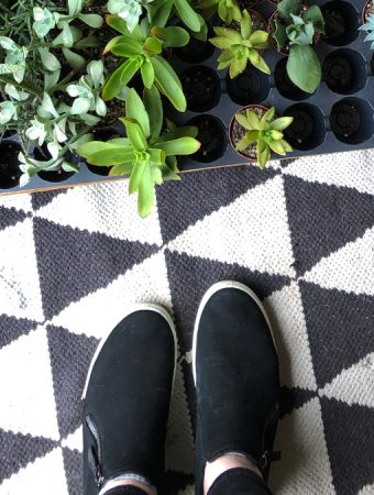 black shoes on a black and white rug with succulents